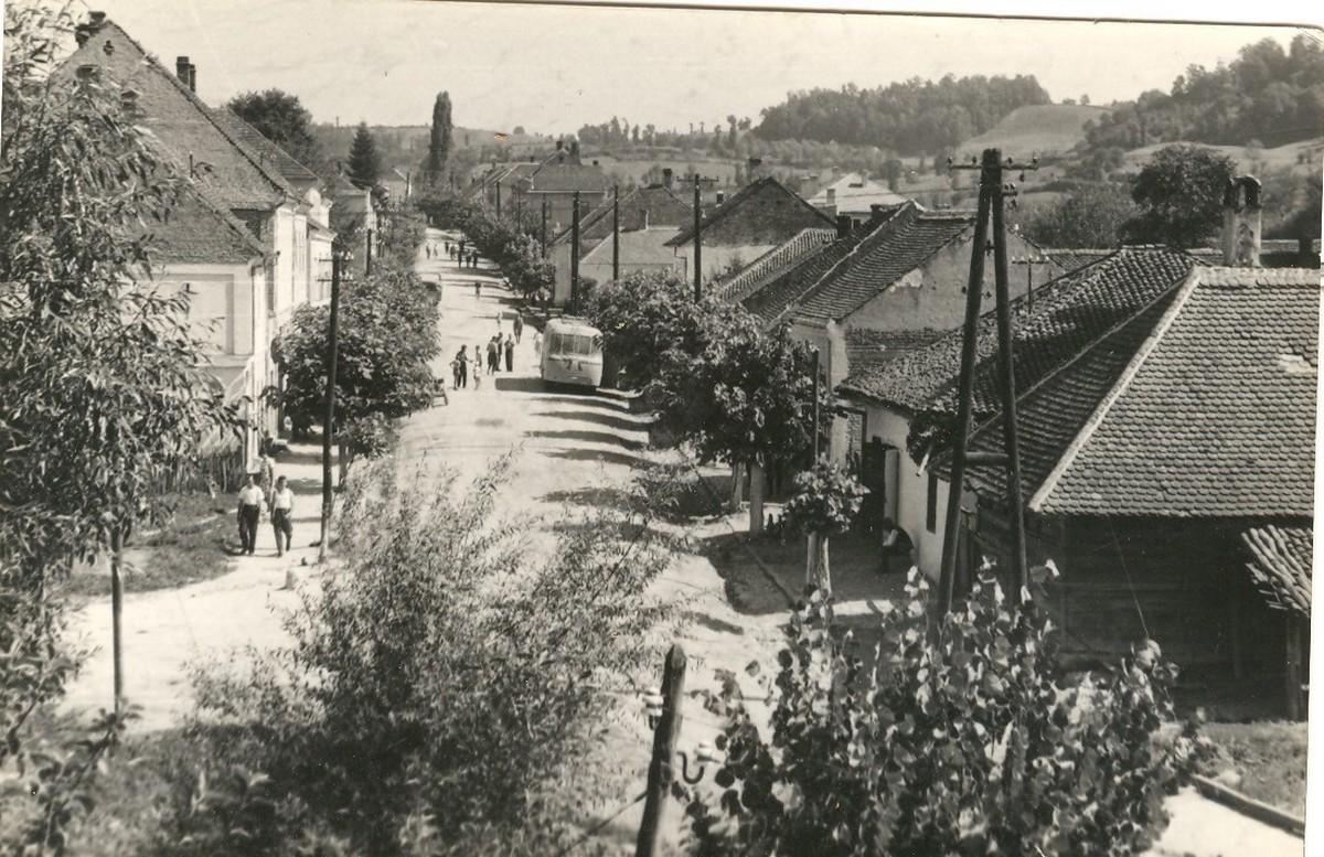 Центар Белановице, 1950. година