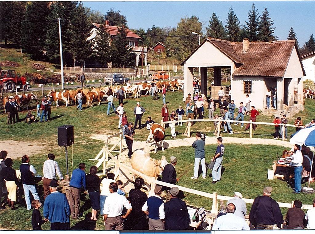 Изложба стоке 1994. године у Белановици